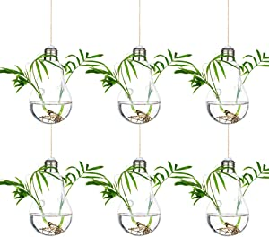 Glass Large Hanging Planters Water Air Plant Succulent Containers Terrarium Candle Holder Indoor Outdoor 2 Holes 6Pcs with Strings Rope for Home Garden Balcony, Bulb Shape
