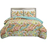 HollyHOME Paisley Bedspreads Twin size Antique Chic Quilted Lightweight and Reversible (Qrange, Turquoise, Pink)