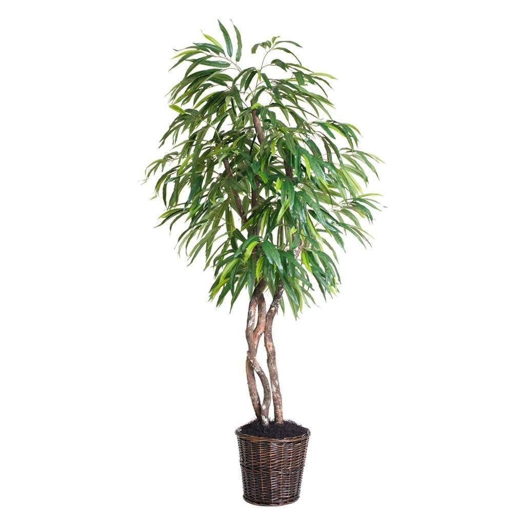 Vickerman THE2860-07 Mango Heartland Everyday Tree - 6 ft.