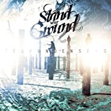 Despondanseas by Stand Your Ground (2011-08-29)