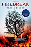 Firebreak: A Mystery (Josie Gray Mysteries)