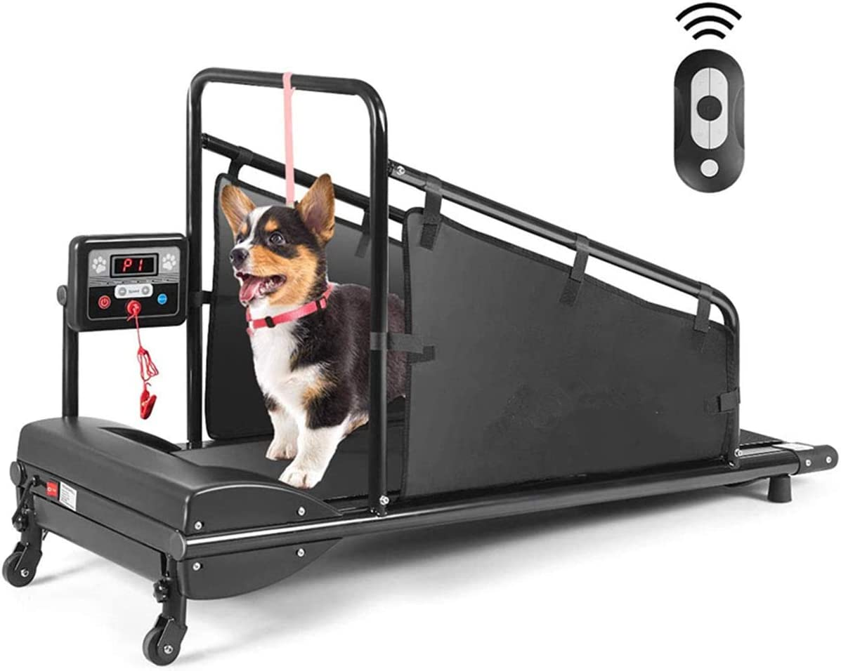Amazon.com: Goplus Dog Treadmill, Pet Running Machine for  Small/Medium-Sized Dogs Indoor Exercise, Pet Fitness Equipment with Remote  Control and 1.4'' Display Screen (Black): Sports & Outdoors