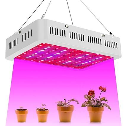 Flower Indoor LED and Light Light1000W Plant for Spectrum Veg Full Grow Plants pSMqUzV