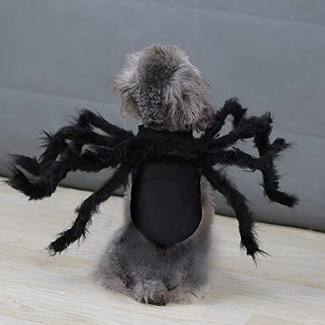 guowei0074 Traje De Araña para Mascotas Ropa para Araña De ...