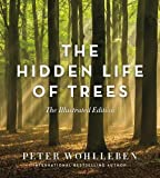 img - for The Hidden Life of Trees: The Illustrated Edition book / textbook / text book