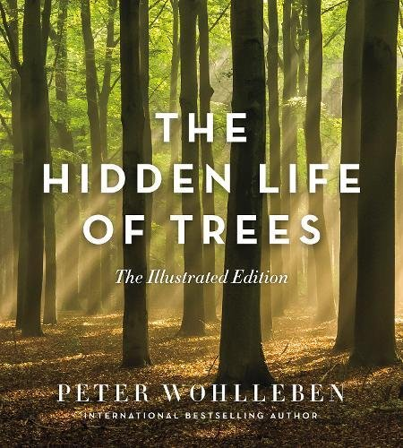 the-hidden-life-of-trees-the-illustrated-edition
