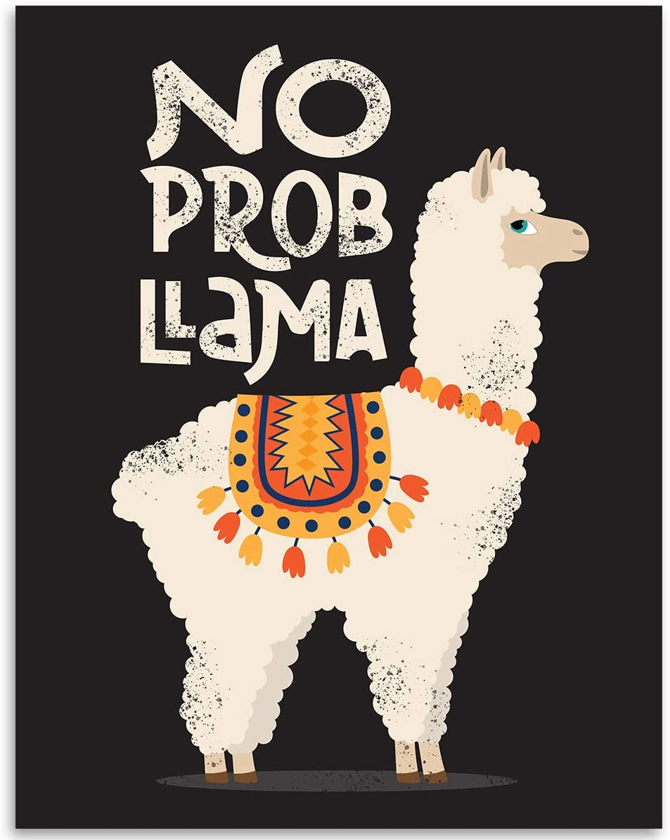 Amcove Cute Cartoon Llama Cactus Design with No Prob Llama Motivational Quote Novelty License Plate Decorative Front Plate,6 X 12 Inch