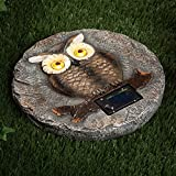 Bits and Pieces - Solar Owl Garden Stone - LED Outdoor Garden Décor - Lawn Stone Measures 10'' in diameter