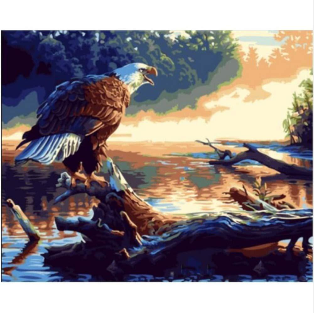 CZYYOU DIY Digital Malen Nach Zahlen Adler Himmel Ölgemälde Wandbild Kits Färbung Wandkunst Bild Geschenk - Ohne Rahmen - 40x50cm B07PQ6X42R | Guter weltweiter Ruf