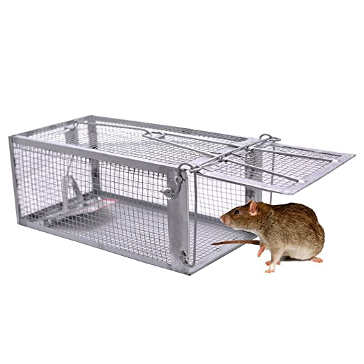 lebendfalle maus mousetrap lebendfalle xtremebass tags mouse mousetrap trap maus falle with. Black Bedroom Furniture Sets. Home Design Ideas