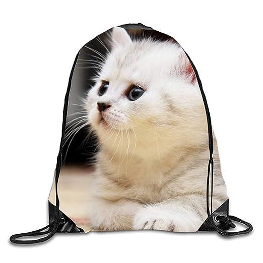 925b5fd918b1 Amazon.com   Spring Kitten Cats Drawstring Bag Waterproof Backpack ...