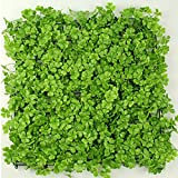 A.B Crew 19.7''x19.7'' Artificial Greenery Panels Indoor/Outdoor Wall Decor(Clover,Pack of 1)