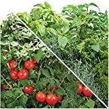 Aerogarden Special Bundle Gourmet Herbs and Cherry Tomato Seed Pods