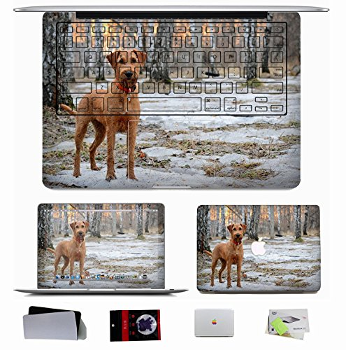 10 PCS Macbook Pro/Air 11 13 15 Inch Skin Decal Sticker - Animals Dog Muzzle S Dog Collar Snow Walk Spring Wood