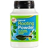 Polvo de hormonas enraizante Doff® (75g, 2 unidades). Ayuda a las nuevas raíces en esquejes y fomenta las raíces fuertes y sanas