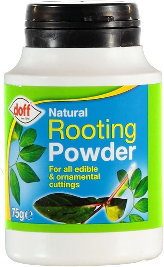 Doff Natural Rooting Powder – Best for Root Branching