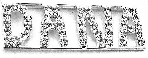 Detti Originals Personalized Rhinestone Dana Name Pin