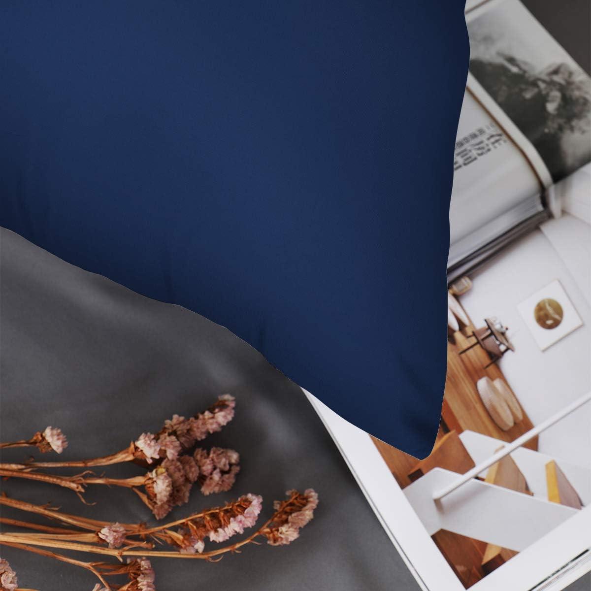 RUIKASI Lot de 2 taies doreiller 80 x 80 cm en Microfibre Super Douce et Douillette 80 x 80 cm Bleu fonc/é