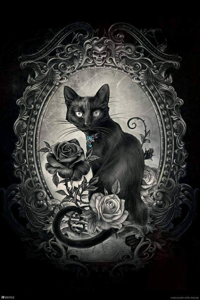 Alchemy Paracelsus Black Cat Gothic Goth Room Decor Skull Horror Witchy Witchcraft Wiccan Decorations Cubicle Locker Mini Art Poster 8x12