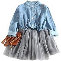 SiQing Vestido de Princesa con tutú de Malla de Manga Larga para niñas pequeñas