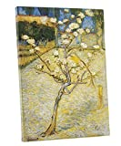 Blossoming Pear Tree1888, Vincent van Gogh (1853 - 1890)Currrent Location: Van Gogh Museum, Amsterdam (Vincent van Gogh Foundation)The Van Gogh Museum described Van Gogh's approach and technique when he made Blossoming Pear Tree: He chose a h...