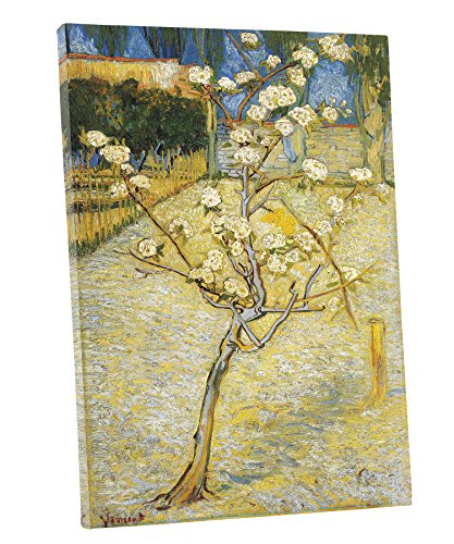 Niwo Art (TM) - Blossoming Pear Tree, by Vincent van Gogh - Oil painting Reproductions - Giclee Canvas Prints Wall Art for Home Decor, Stretched and Framed Ready to Hang (16 x 20 x 0.75 Inch)