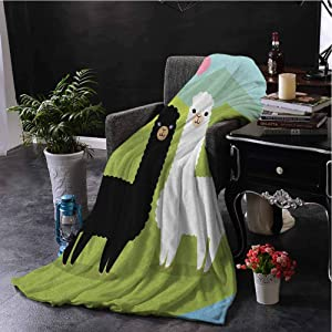 Llama Luxury Special Grade Blanket Alpacas in Love in The Mountains Argentina Fauna Animals with Contrasting Colors Multi-Purpose use for Sofas etc. W54 x L72 Inch Multicolor