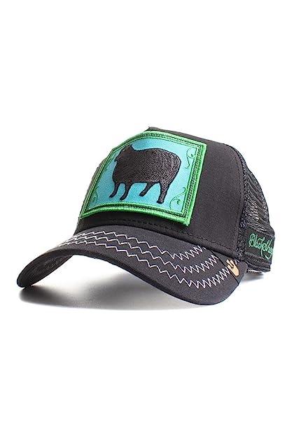 Goorin Bros. - Gorra de béisbol - para Hombre Negro Negro: Amazon ...