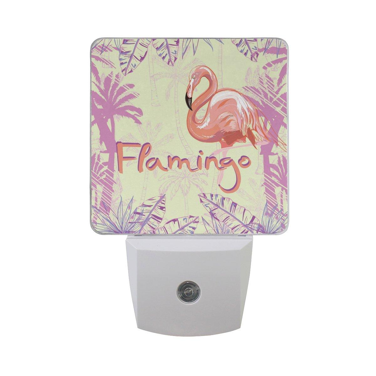 JOYPRINT Led Night Light Tropical Flamingo Palm Tree Leaves, Auto Senor Dusk to Dawn Night Light Plug in for Kids Baby Girls Boys Adults Room by JOYPRINT