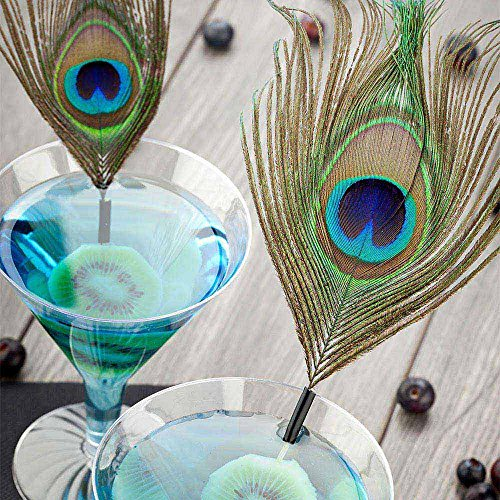 Peacock Eye Pick, Peacock Feather Skewer, Food Picks, Sticks - 6'' - Perfect for Serving Appetizers and Cocktail Garnishes - Natural Color - 1000ct - Restaurantware by Restaurantware (Image #2)