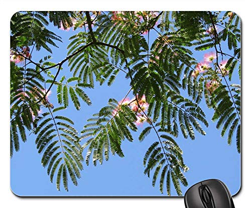 Price comparison product image Mouse Pad - Silk Tree Blue Sky Wallpaper