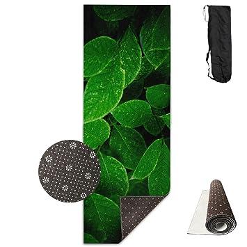 Amazon.com: Bushes Leaves Herbs Spots Yoga Mat,Crystal ...