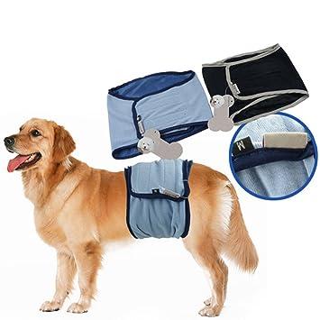 Pusheng mascotas fisiológicos Pantalones Vientre banda macho Wrap perro pañales para incontinencia Formación y reutilizable
