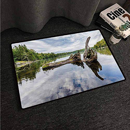 HCCJLCKS Entrance Door mat Driftwood Remains of a White Cedar Tree Trunk in The Lake and The Sky Digital Image Non-Slip Door mat pad Machine can be Washed W30 xL39 - Tree Trunk Red Cedar