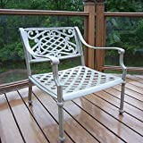 Oakland Living Tacoma Cast Aluminum Arm Chair, Beach - Best Reviews Guide