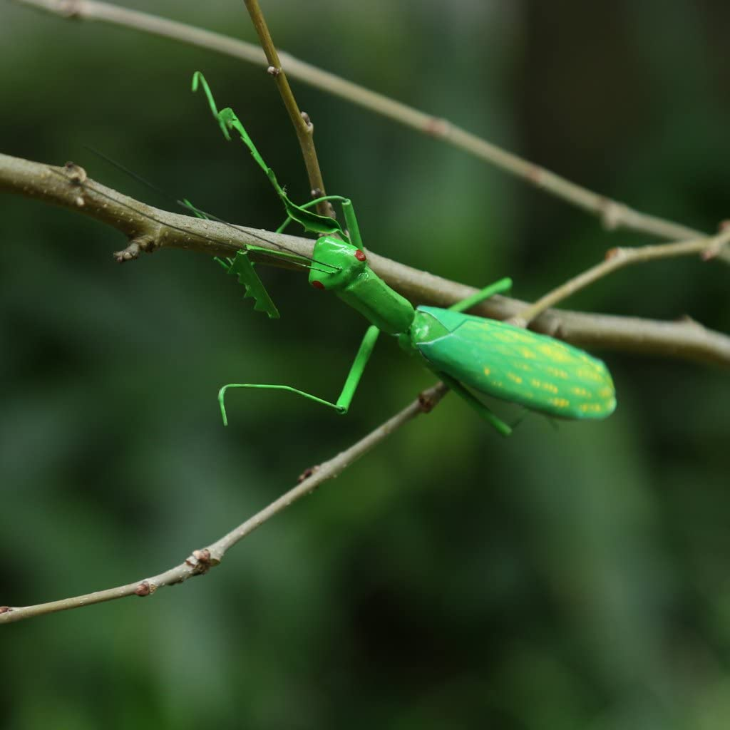 Cicada LOVIVER Mini Insects Wild Animal Bug Figurines Insects Toy Play Kid Party Animal Toy