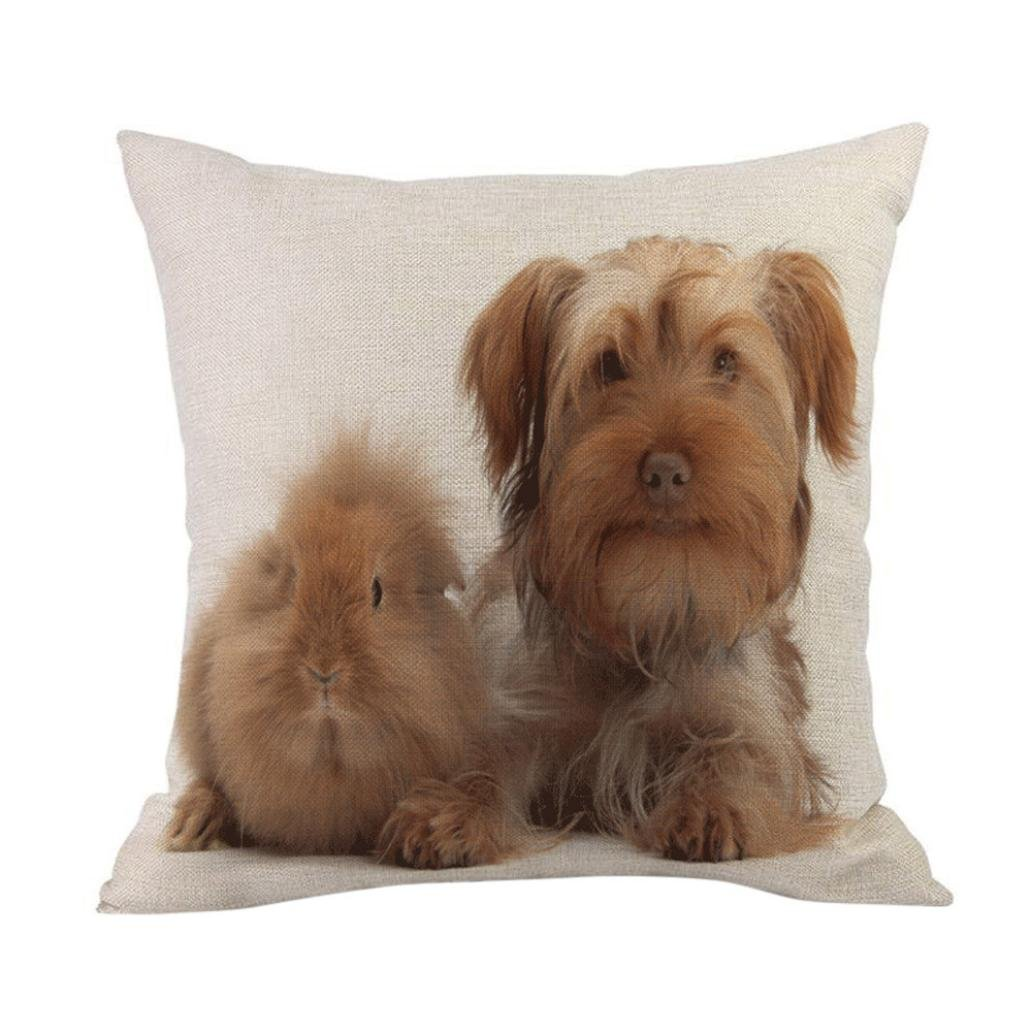 Easter Pillow Cover Home Car Decoration Sofa Bed Festival Throw Pillow Case Square Cushion Cover (G)