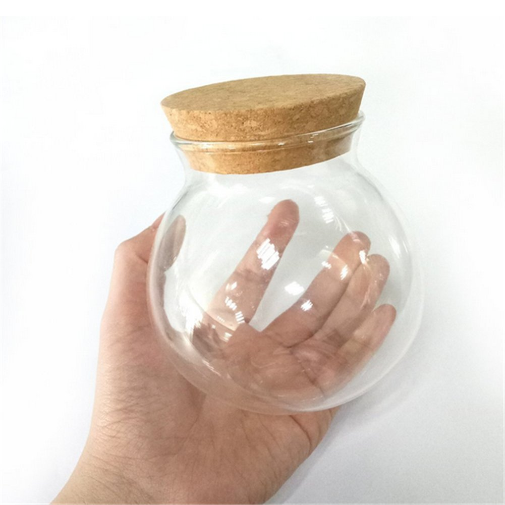 milopon Clear Glass Airtight Canister herm/étique Bidon with bois /à paupi/ères Storage Jar for Candy Tea Cookie Nuts Cereal 570/ml