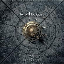 Into The Grey (Rollenspielsoundtrack) by Erdenstern