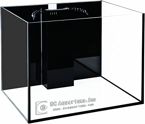 SC-Aquariums-80-Gallon-Starfire-Aquariums