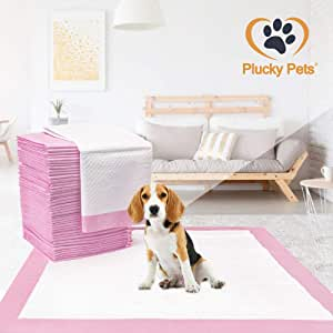 Plucky Pets - 50/100/200/400 Training and Puppy Pads Pee Pink Pads for Dogs 60x60cm - Super Absorbent & Leak-Free (100 Pads)