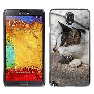 Etui Housse Coque de Protection Cover Rigide pour // M00110221 Gatos blancos y negros Furry Animals // Samsung Galaxy Note 3 III N9000 N9002 N9005