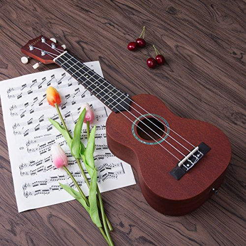 Artall 21 Inch Handcrafted Solid Wood Soprano Ukulele, Small Sapele Guitar Beginner Pack with Carrying Bag & Accessories, Brown by ARTALL