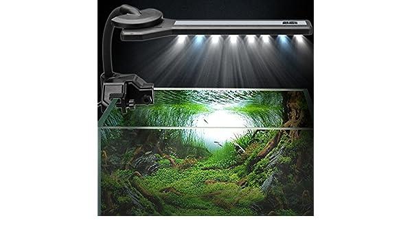 Wuchance Lámpara de Acuario 360 Flexible con luz de Acuario con Clip, Mini lámpara: Amazon.es: Hogar