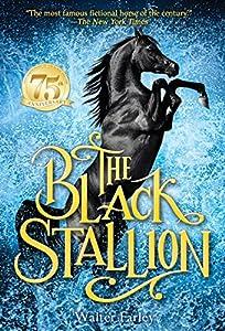 Paperback The Black Stallion Book
