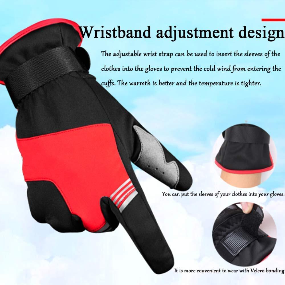 Qzp Handschuhe Winter Männer Und Winddicht Frauen Winddicht Und Warm Touchscreen Mountainbike Handschuhe Elektro Motorrad Ausrüstung Reiten,schwarz-XXL 98ccc9