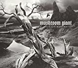 Painted Mantra by Mushroom Giant (2014-08-03)
