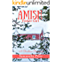 Amish Foster Girl (Amish Foster Girls Book 2)