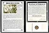 1 IT magi ANCIENT Biblical Coin of The Magi,Silver Tetradrachm of Azes II,35 BC-5 AD,- Includes Certificate and Album.The larger Magi Coin. 18mm Fine