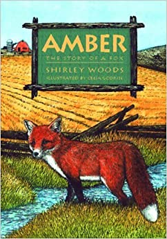 Book Amber: The Story of a Red Fox by Shirley Woods (2004-02-26)